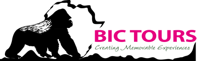 BIC TOURS LTD. Logo