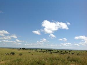 Uganda Safaris_Bic Tours